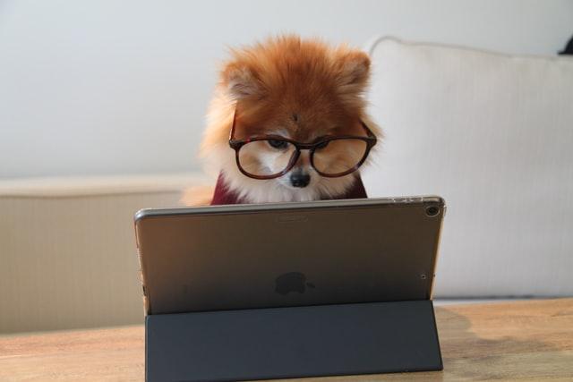 【クラウドワークス登録1か月】WEBライティング案件に挑戦